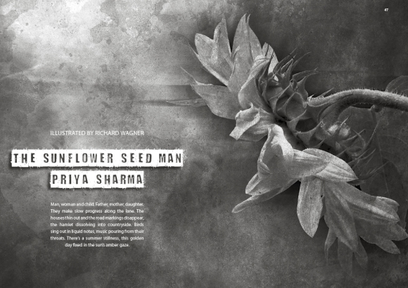 The Sunflower Seed Man by Priya Sharma & illustrated by Richard Wagner
