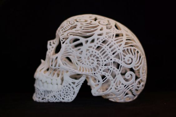 Skull Sculpture -Crania Anatomica Filigre
